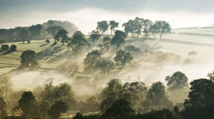 Longnor Staffordshire Autmn Mist - Landscapes