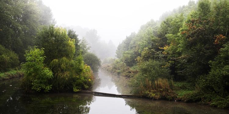 Lathkill Dale - Landscapes