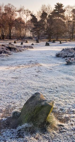 Stanton Moor Nine Ladies - Stanton Moor Landscapes