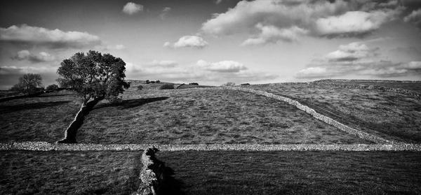 Litton Derbyshire Limestone Walls - Black and White