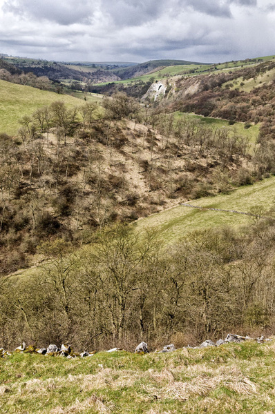 Beeston Tor - Landscapes