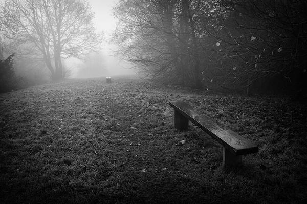 Park benches - Simplicity