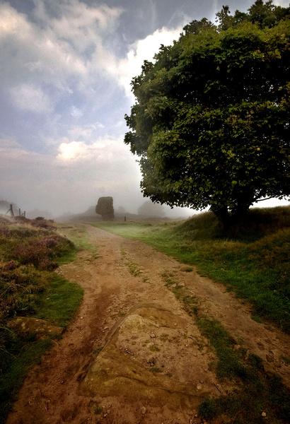 Stanton Moor Cork Stone - Stanton Moor Landscapes