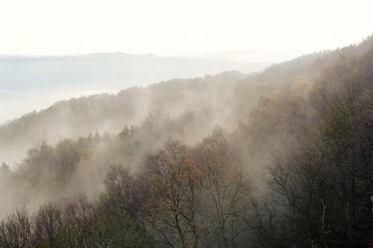 Derbyshire Morning Mist - Landscapes
