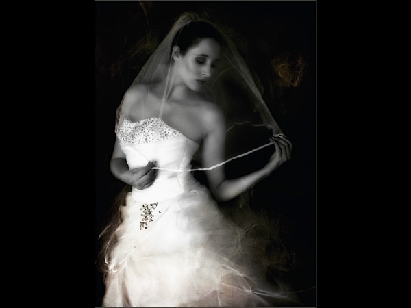 The Bride - Latest Additions