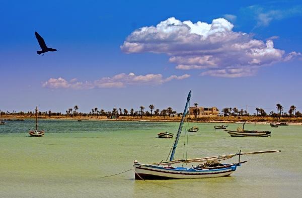 - Tunisia