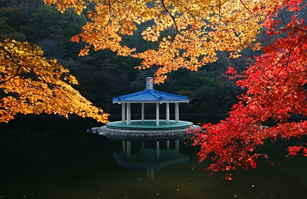 - Korea and Japan