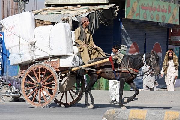 - Pakistan