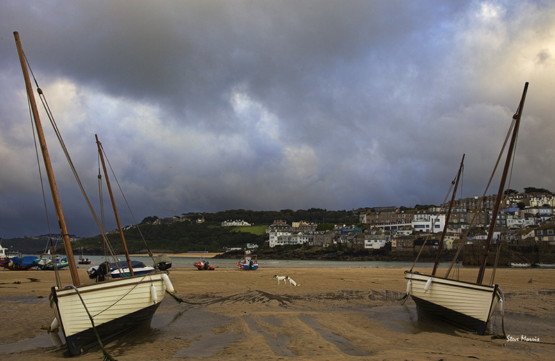 Two sets of twins - Special St Ives