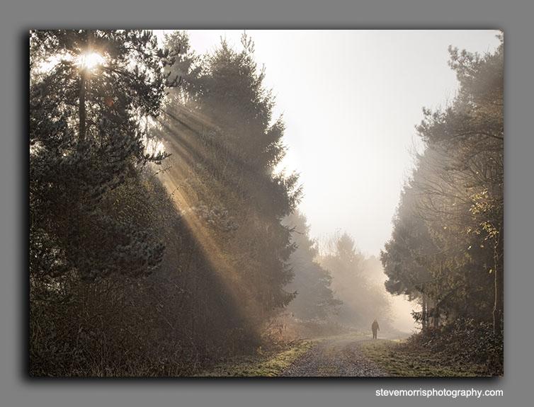 Homeward bound - Sun in Splendour