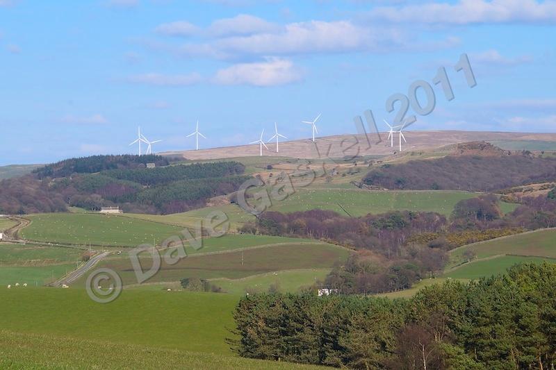 DSC_2444 - Caton Moor - Lancaster