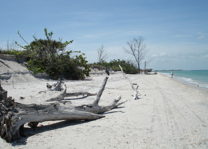 Local beach 1 - Florida Holiday Home