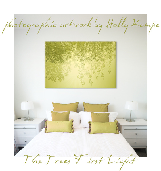 The Trees First Light - Artwork Displayed in a Room