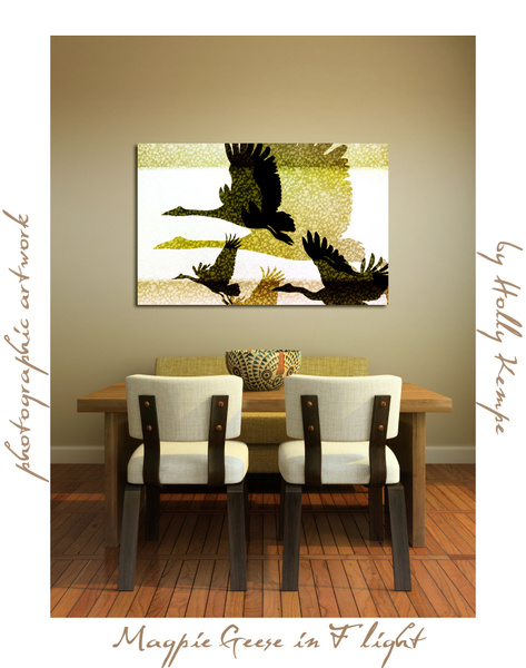 Magpie Geese in Flight - Artwork Displayed in a Room