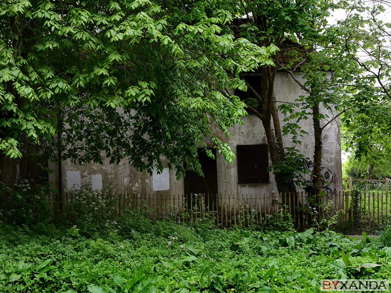 Abandoned house - Other Subjects