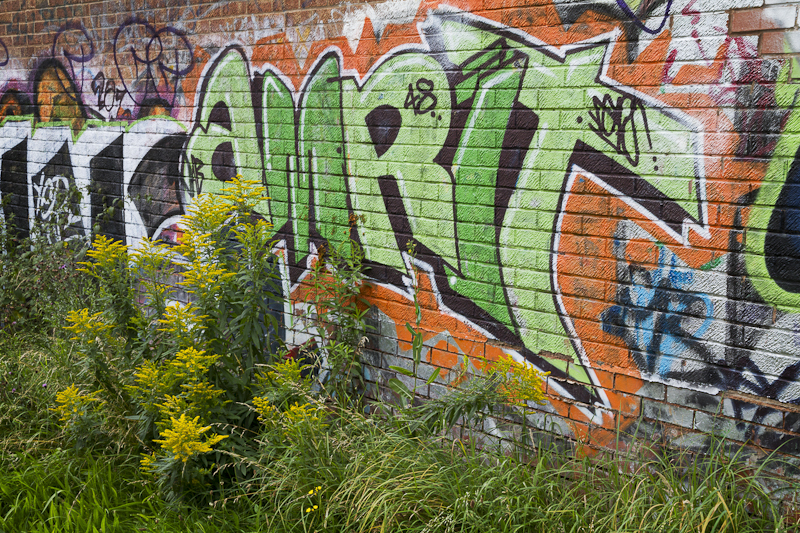 Amrit - Worcester Birmingham Canal