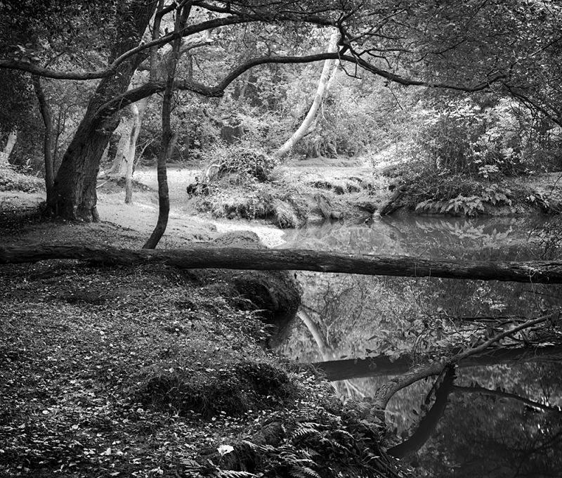 0496 - Beaulieu River - Images from England