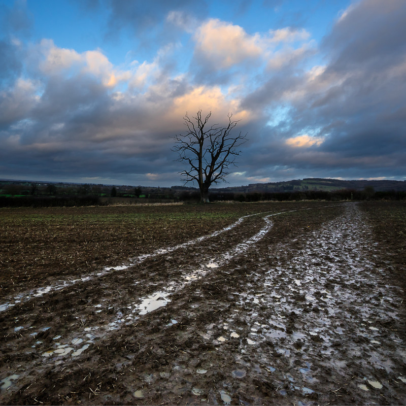 Day 8 - The Muddy Way - The Cotswold Way - 2017/8