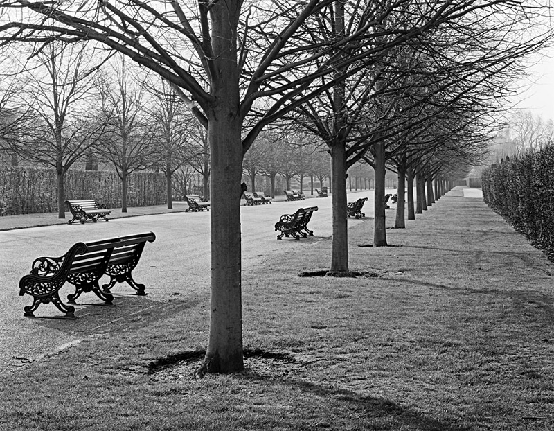 1386 - Regents Park Benches 1 - Images from England