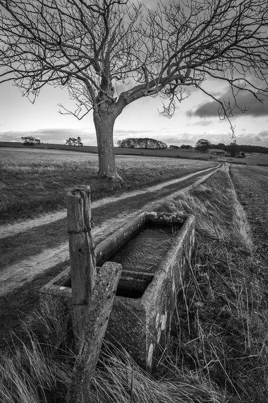 Day 9 - Stone Drinking Trough - On Bredon Hill - 2016