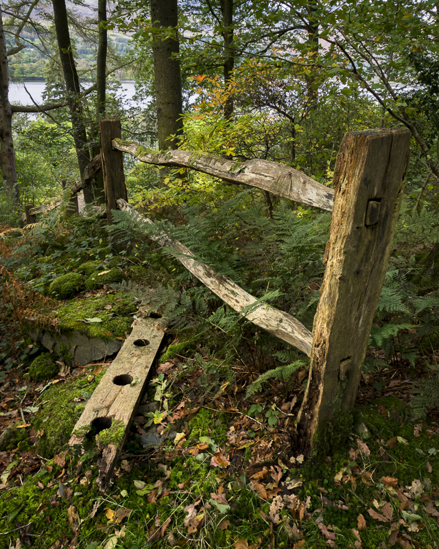 Brantwood Fence - English Lake District