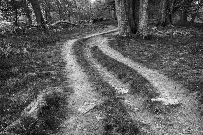 Day 21 - Three Paths - On Bredon Hill - 2016