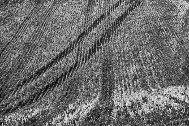 Day 3 - Cutting Across - On Bredon Hill - 2016