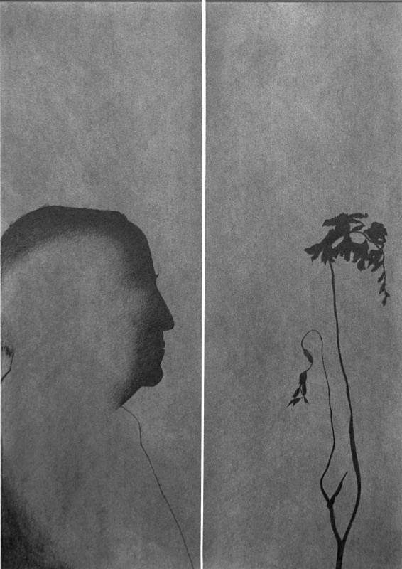 Disjunction 1 445mm x 630mm Drawing - Flower Drawings