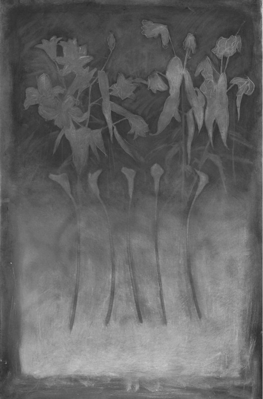 Untitled 36in x 60in - Flower Drawings