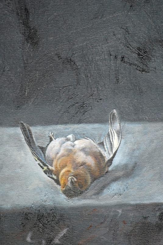chaffinch 2 Detail - Bird Paintings