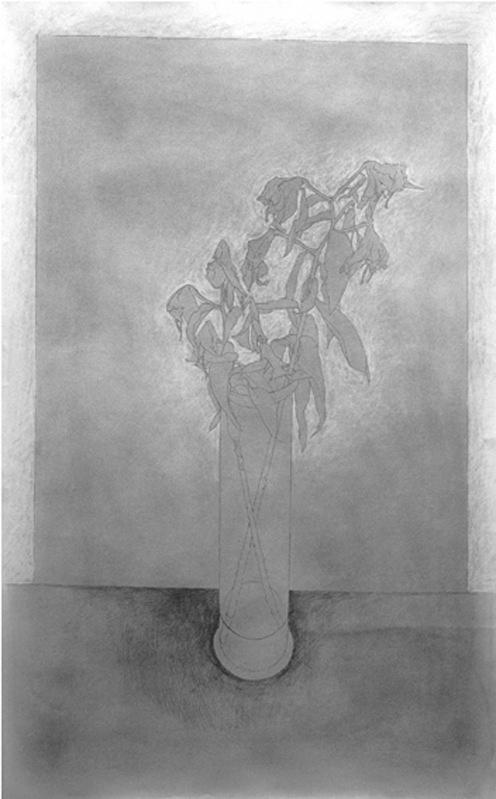 Gentle Drawing 36in x 60in - Flower Drawings