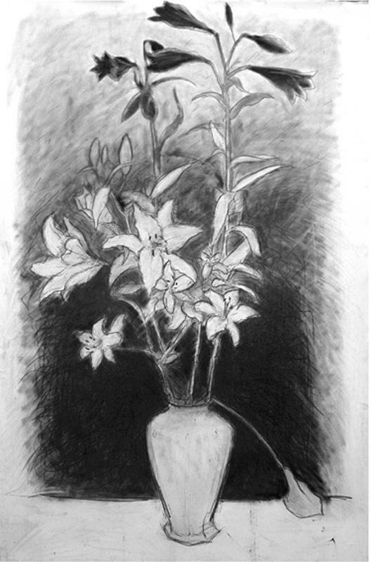 Untitled 36in x 60 in - Flower Drawings