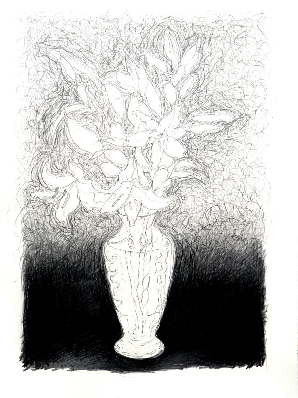 Quick drawing 20in x 30in - Flower Drawings