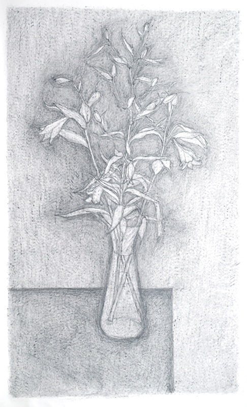 Vase and Edge 36in x 60in - Flower Drawings