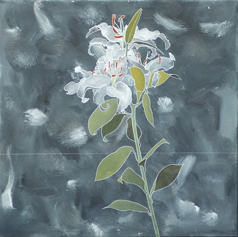 Lily on Grey24in x 24in - Flower Paintings