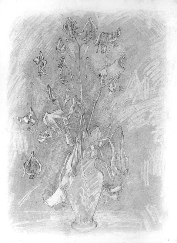 Drawing - Dead Flowers 20in x 30 in - Flower Drawings