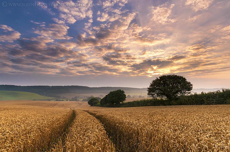 Devon Sunrise - Cornwall, Devon & South of England