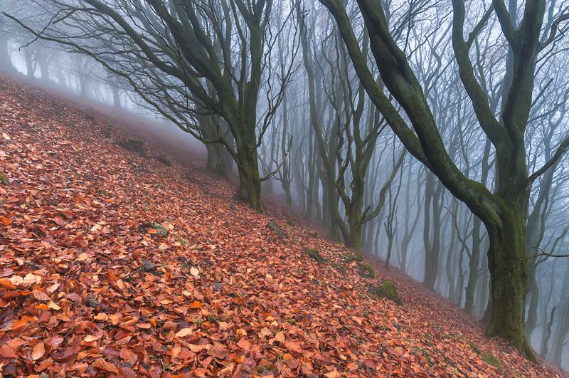 Vertigo. - Peak District & surrounding area