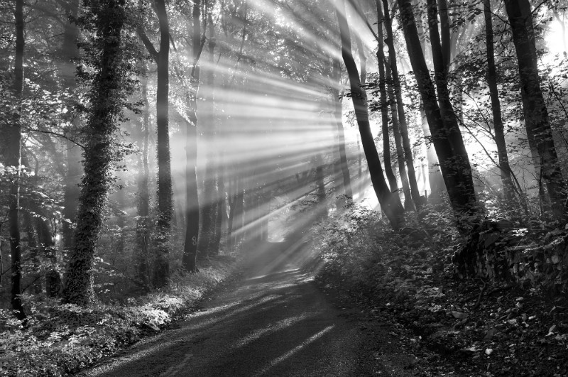 Crepuscular rays, Peak District - Black-and-white
