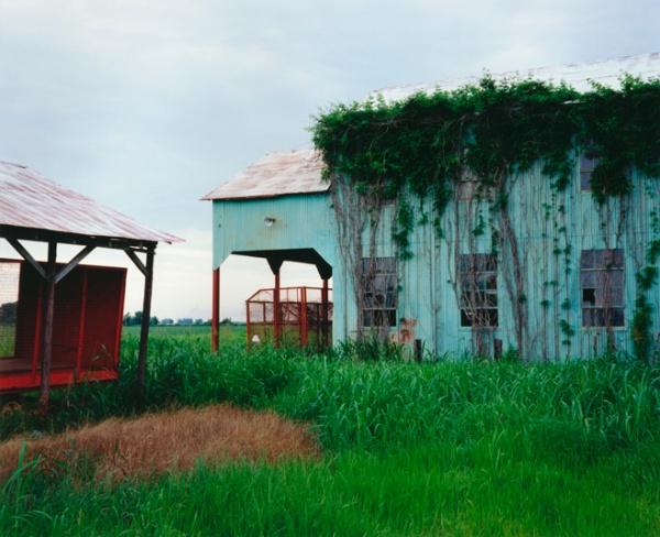 Green Gin, Mississippi, 1999 - Take Time to Appreciate