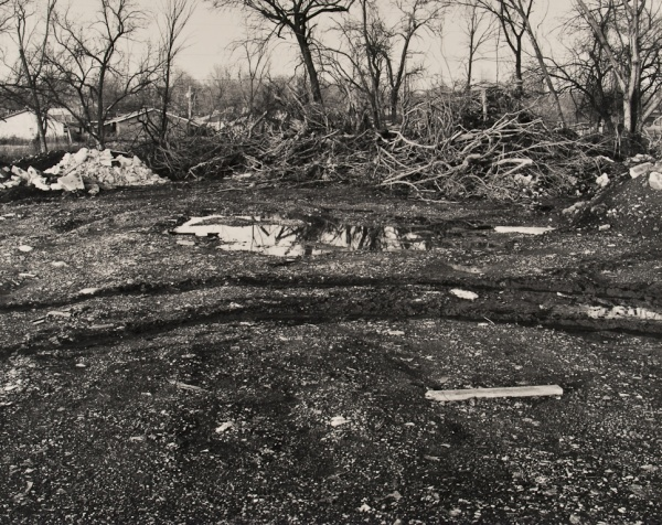 The Woods Behind the Houses, Missouri, #6, 1992 - Landscapes