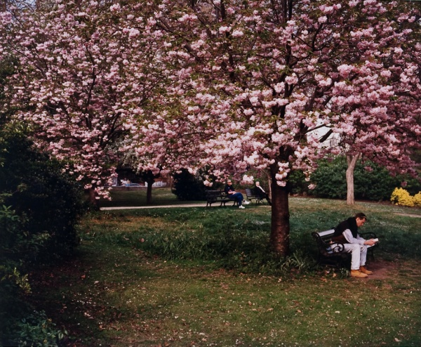 Reading in the Park, London, 1997 - Britain and Spain
