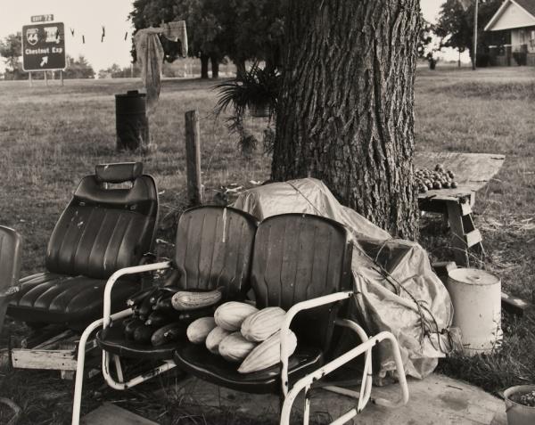 Goodman's Garden, Missouri,1992 - The Garden Series