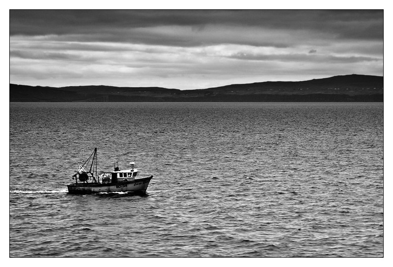 Homeward bound - Monochrome Images