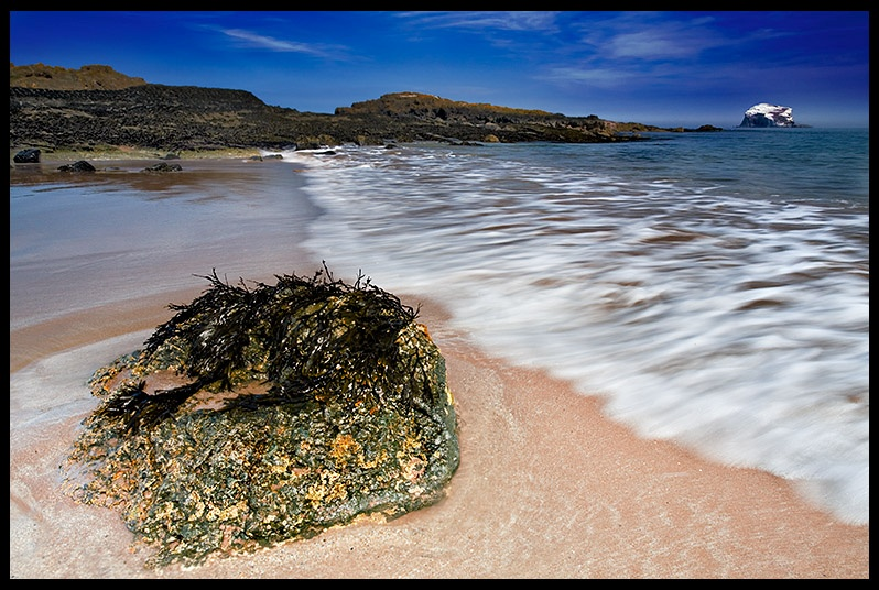 The Leithies - East Lothian - Coastal Scotland