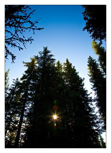 Jasper National Park - North America