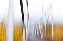 Landscapes & Things of Interest portfolio