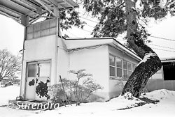Closed Factory in Snow portfolio