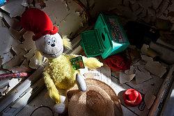 Rockland State Hospital (Orangeburg, NY) | Sr. Seuss Toy
