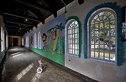 Rockland State Hospital (Orangeburg, NY) | Where the Wild Things Were